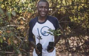 Reflorestamento é moda
