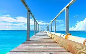 10 razões para mergulhar em Barbados