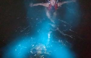Porto Rico tem a baía bioluminescente mais brilhante do mundo, segundo o Guinness