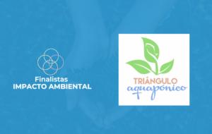 Impacto Ambiental: Triângulo Aquapônico
